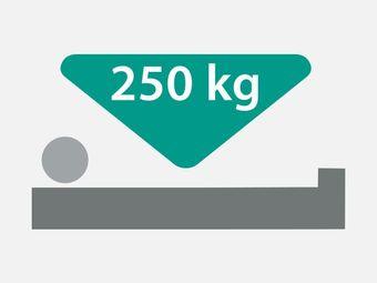Sichere Arbeitslast 250 kg